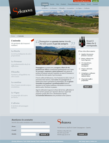 Vini Selvanova - website